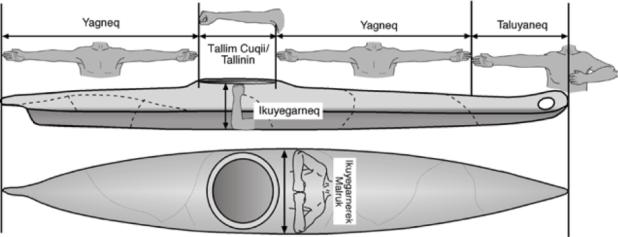 Kayak Measurements:  Courtesy of Kayak Scientific Design and Statistical Analysis